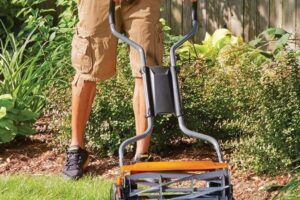 Best Lawnmowers for Zoysia Grass Review