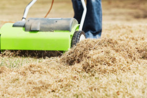 How to Power Rake or Dethatch Your Lawn