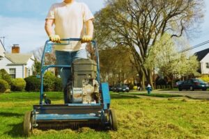 What Is Power Raking in Lawn Care?