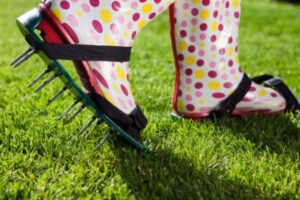 Differences Between Power Raking and Lawn Aeration